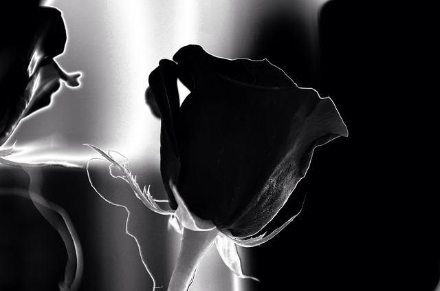 Unsere Trauersprüche Beileidsbekundungen Ergreifend